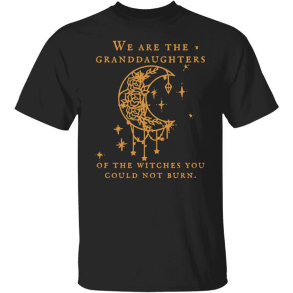 We Are The Granddaughters Of The Witches You Could Not Burn Salem Witch Shirt